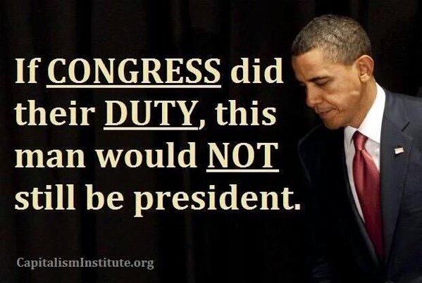 If Congress Did Their Job