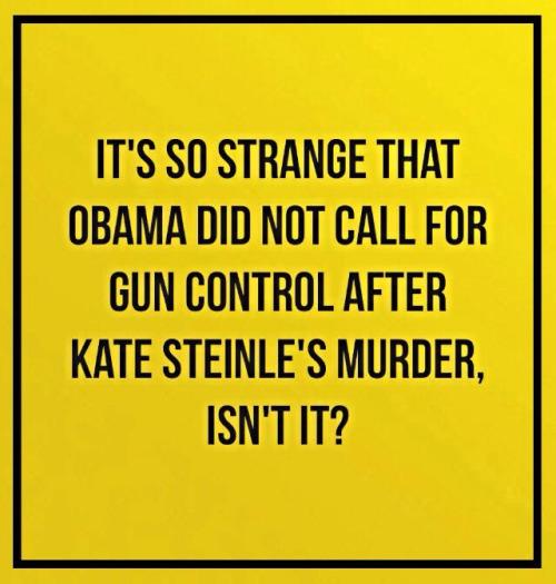 Obambi Gun Control Balk